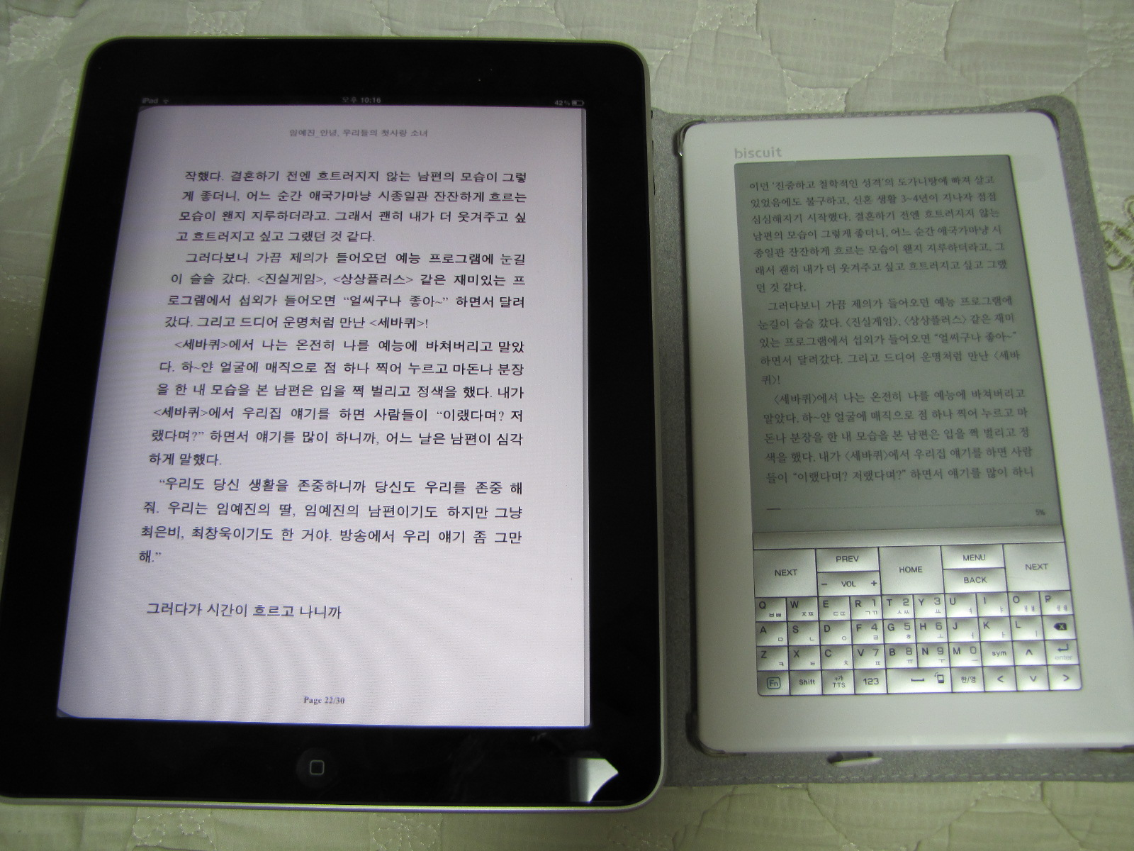 전자책 : Biscuit vs iPad