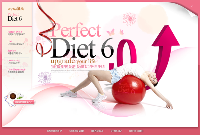 Daesang WellLife-Perfact Diet Micro Website