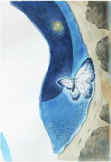 나비,바다
