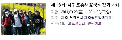 제 13회 서귀포 유채꽃 국제 걷기 대회
