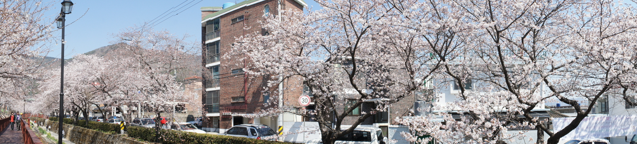 진해 벚꽃놀이 - 여좌천 로망스다리