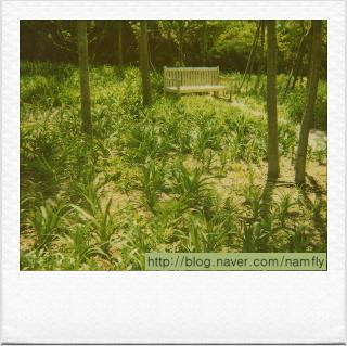 의자-한택식물원