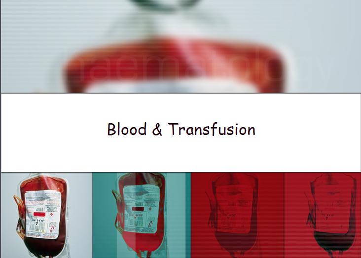 혈액형과 수혈이야기