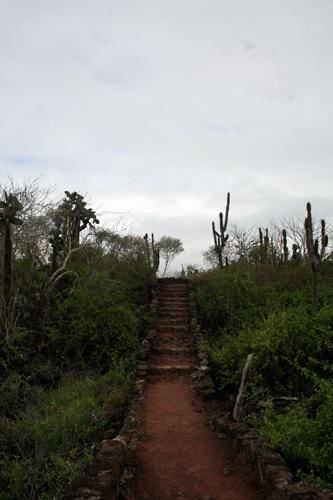 갈라파고스 2 - 산타크루즈 섬
