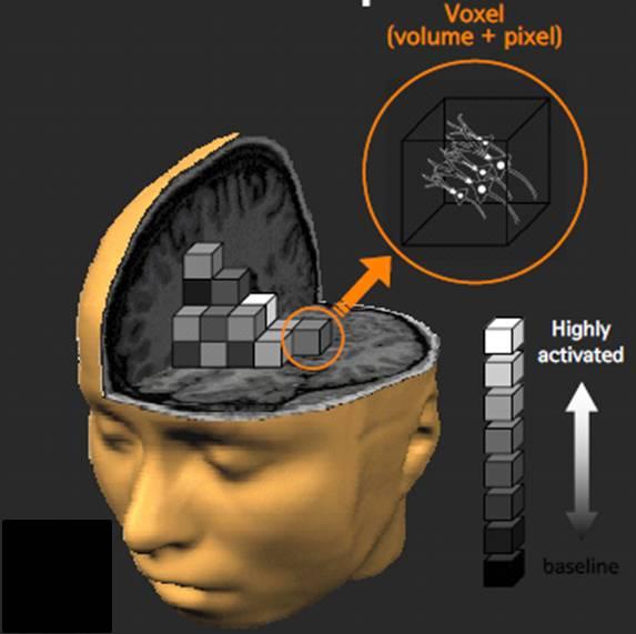 무의식 특집 3-2: (fMRI) 뇌로 보는 의식과 무의식..