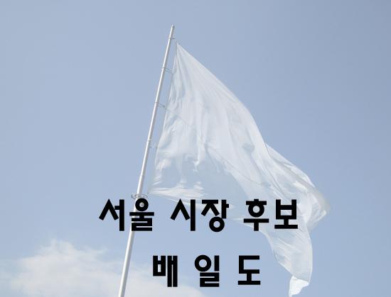 기자수첩, 깃발 없는 기수, 프랭카드 없는 배일도..