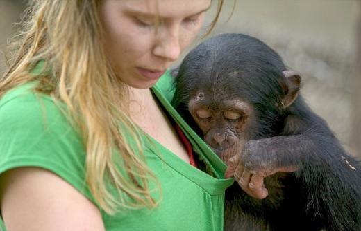 女사육사 속옷 훔쳐보는 '맹랑한' 원숭이