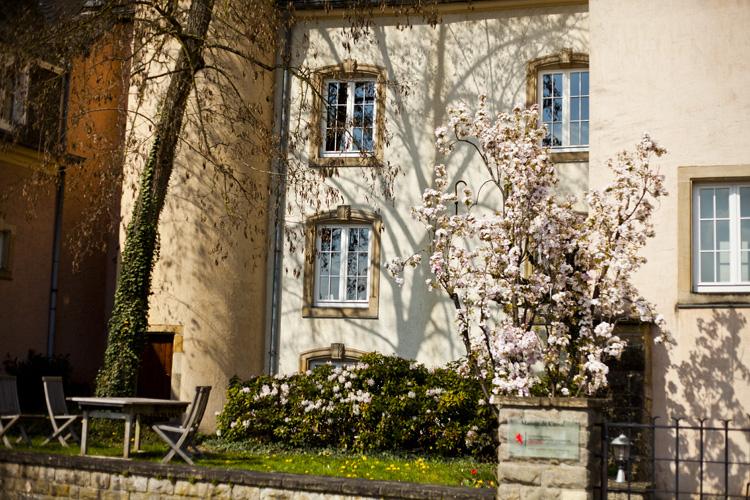 2012 봄의 룩셈부르크 3. 봄 분위기 만끽 산책길