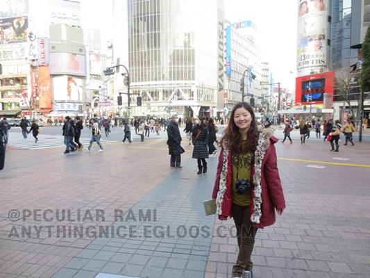 20130109 뉴욕 여행의 경유지 도쿄 - 시부야, 하라..