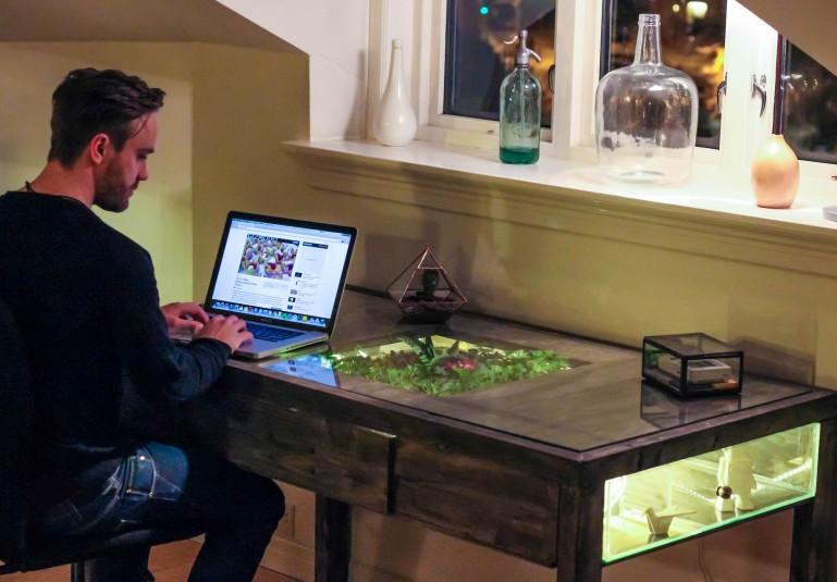 식물을 키우는 컴퓨터 책상, Terrarium work desk
