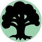 매직 더 개더링 연재 08편 : 다섯 종류 마나 - 녹색