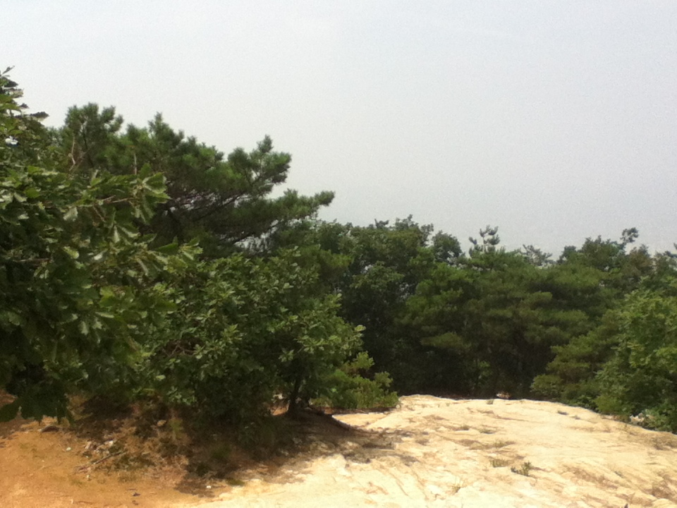 2013년 7월 27일 토요일 관악산 민주동산 정상 전경 ..