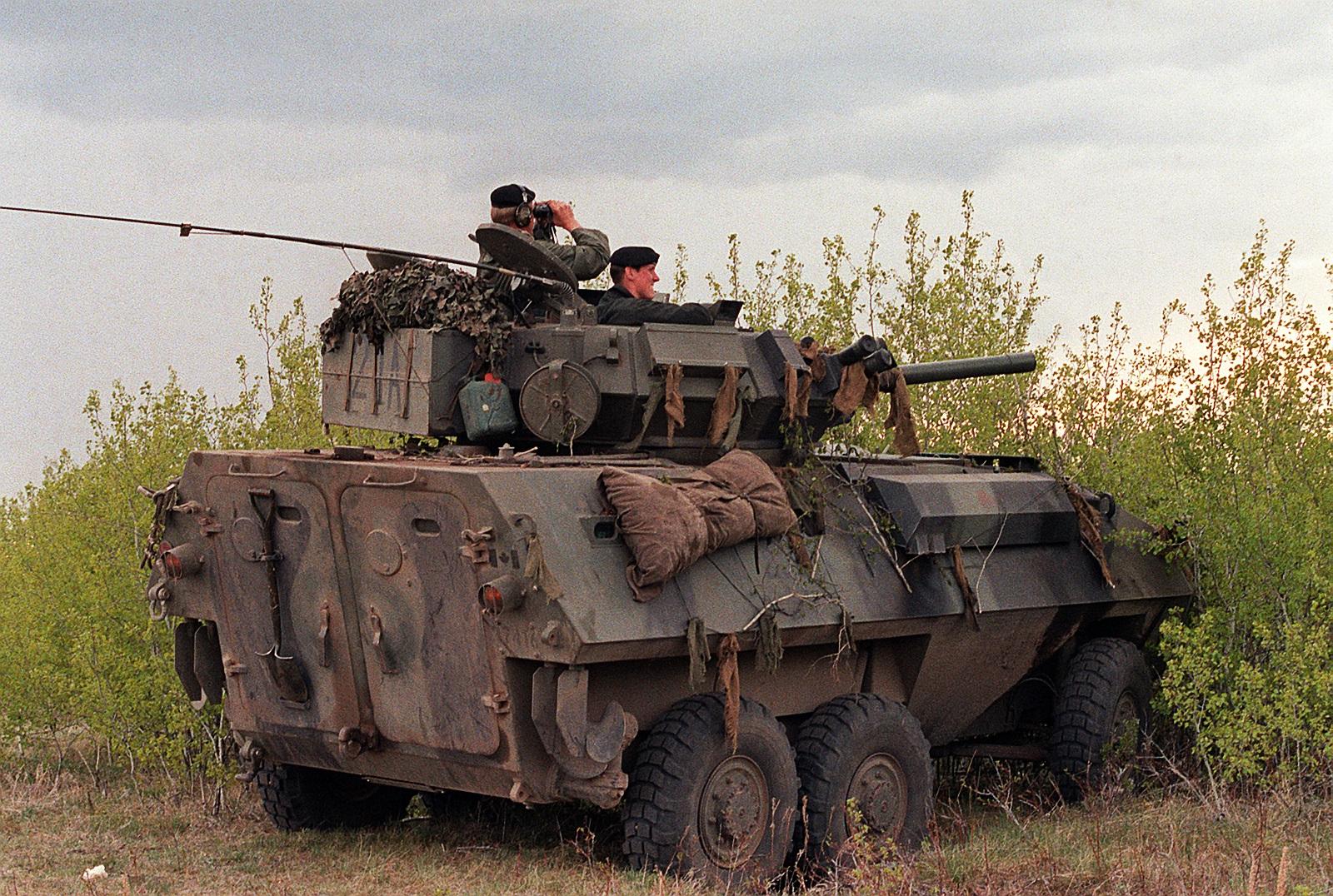 비겐의 무기사진 전문 이글루입니다 캐나다 장갑범용 장갑차 Avgp Cougar