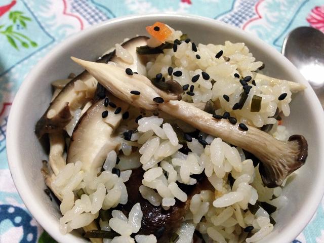 [비건] 버섯+우엉밥,