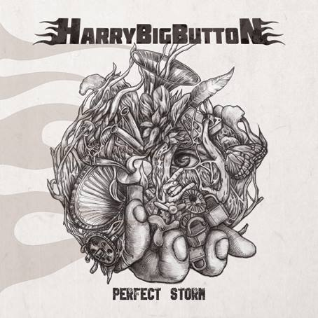 [Review] 해리 빅 버튼 신보 [Perfect Storm]