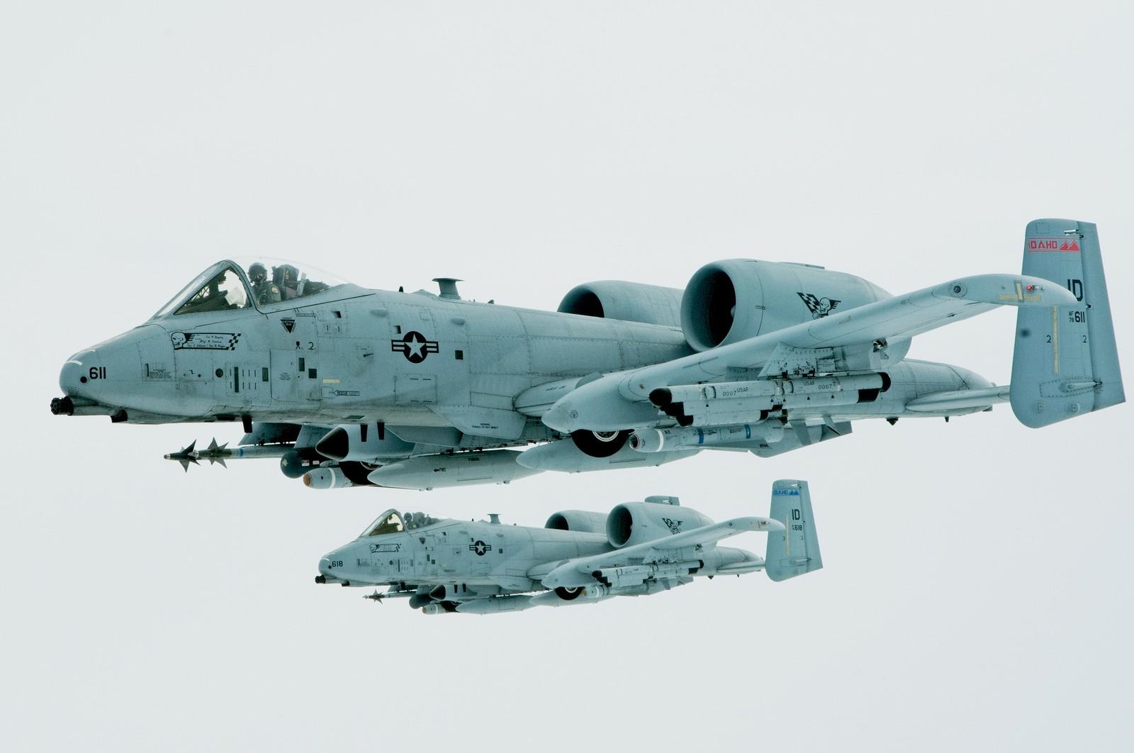 A-10 공격기를 대신할 희생양(?)을 찾는 지지자들