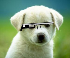 오늘(?)부터 Google Glass를 미국 내에서 기간..