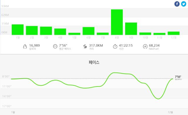2014년 러닝 결과