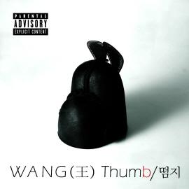 떰지(Thumb)∼왕 [듣기♪가사♪뮤비]서울 남자