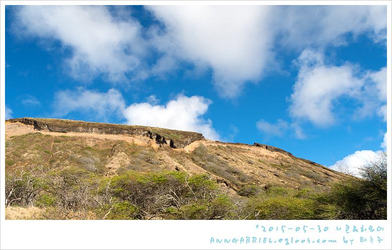 [하와이 오아후] 한국지도 마을과 카이 타운 드..
