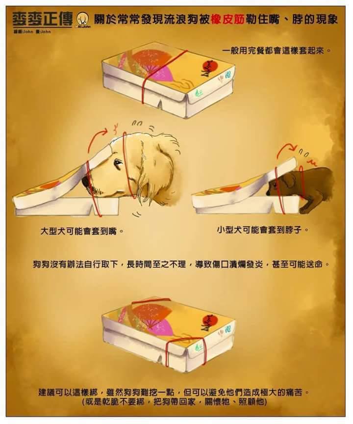대만에서는 개들이 종이도시락 케이스 고무줄에걸린..