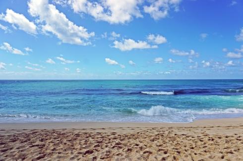 하와이 허니문 2탄