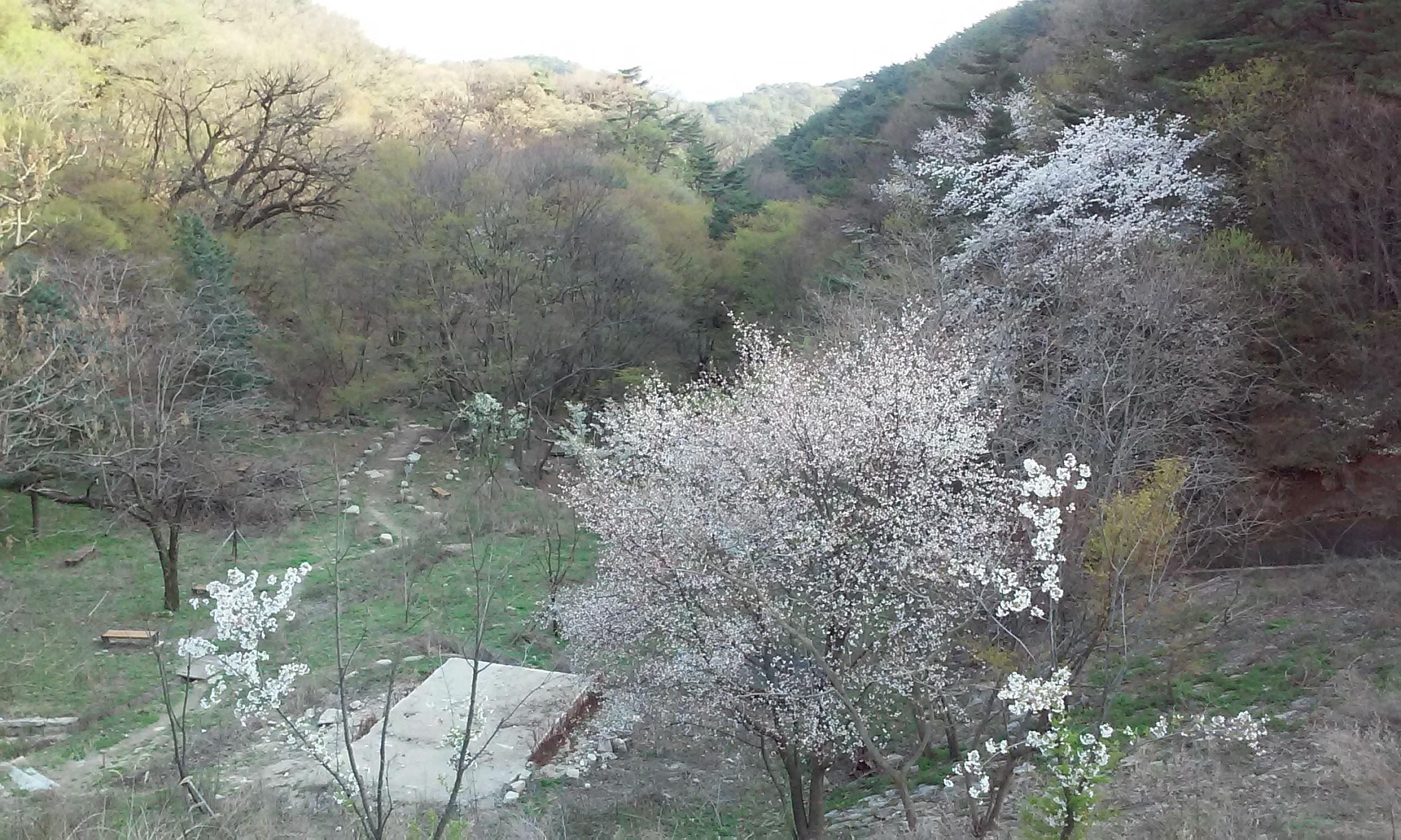 금욜 - 토욜에 거친 일정 서울 대구 부산 서울