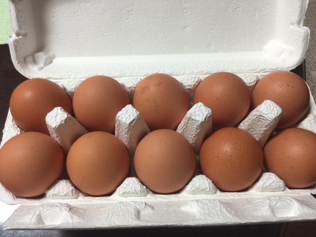 계란이 없으니 모든게 다 귀찮아졌다