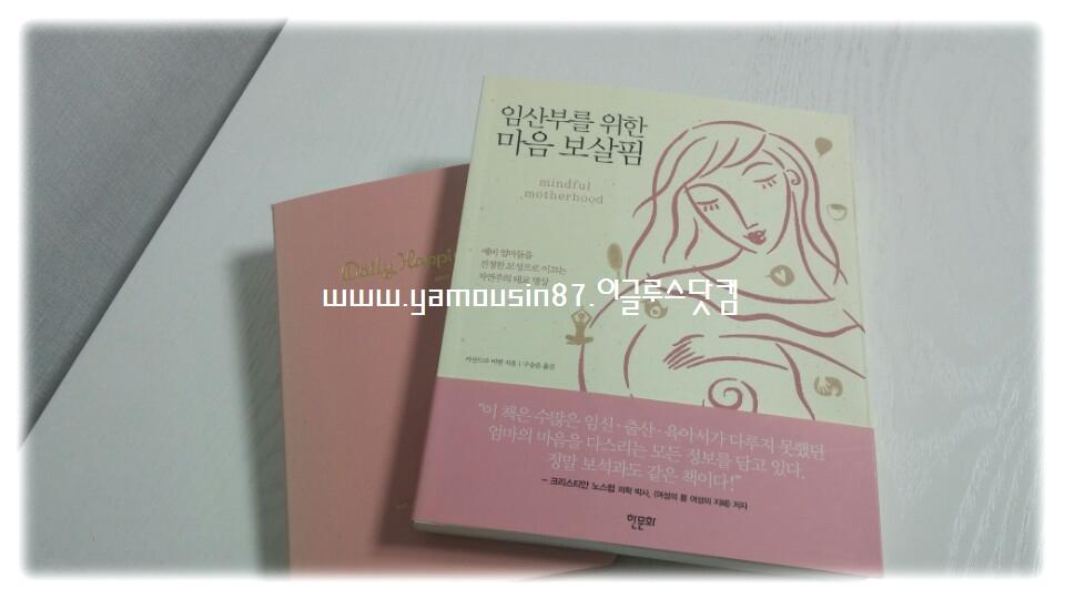 임산부를 위한 마음 보살핌/ 카산드라 비텐