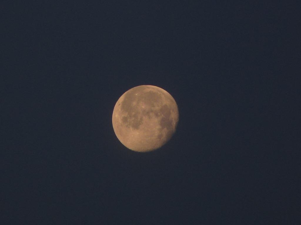 동트기 전 새벽에 찍은 달