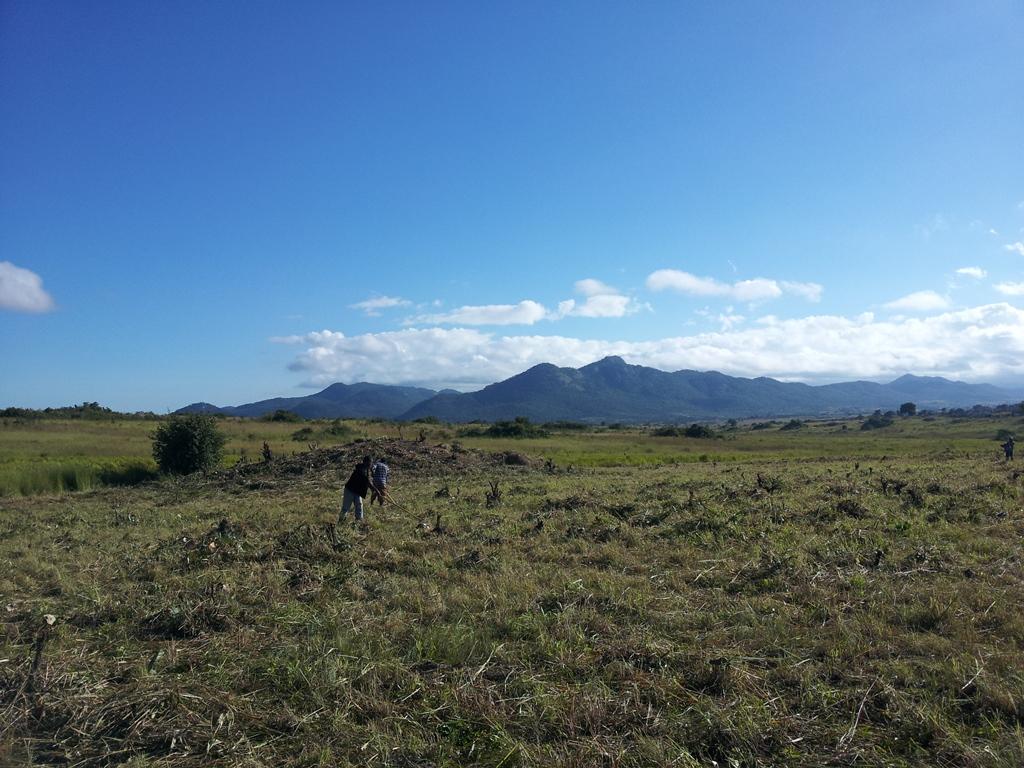 [모잠비크] 주급 주는 날