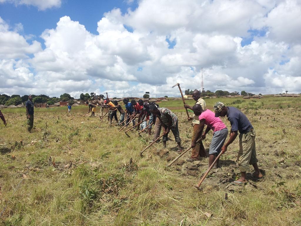 [모잠비크] 평탄화 작업의 연속