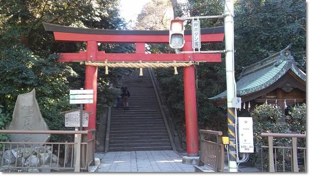 일본 여행 9. 신사(쓰루오카하치만구)는 복잡하..