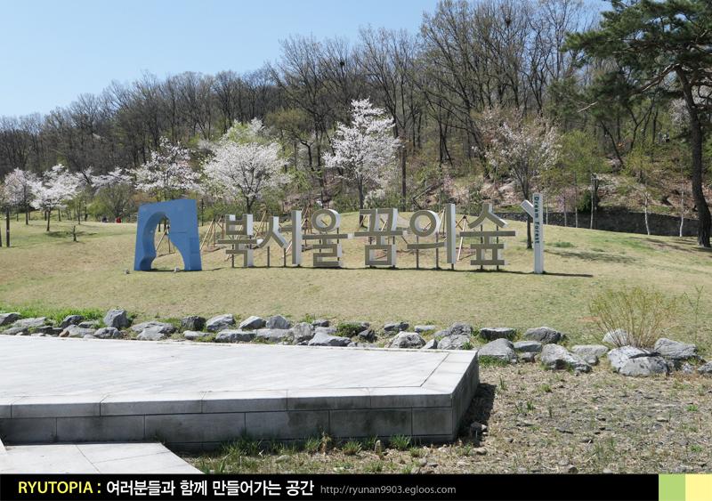 2017.4.17. 벚꽃이 만개했을 때, 북서울 꿈의 숲 ..
