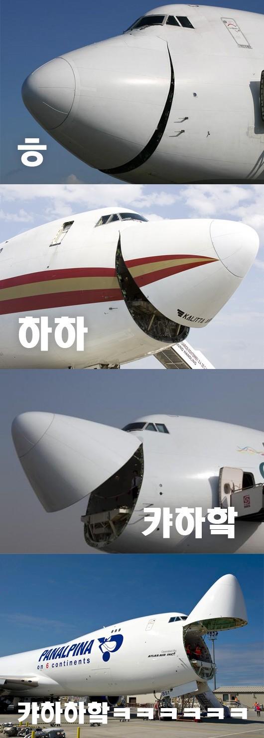 비행기 웃는 모습 모음