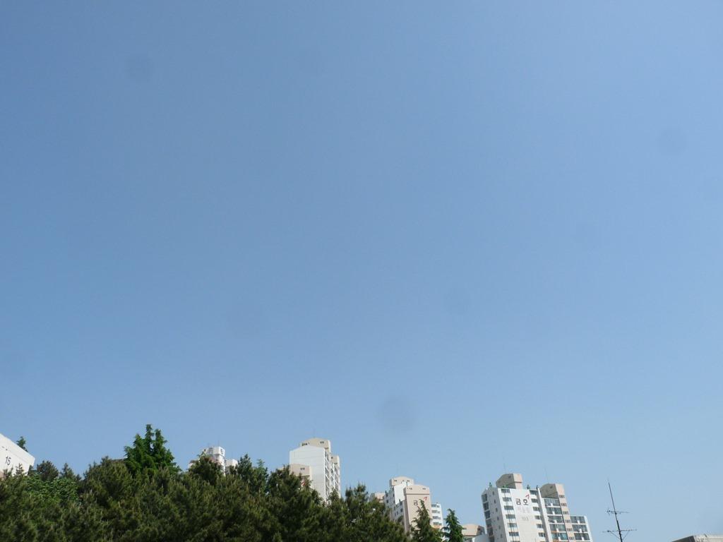 미세먼지 가득한 부산의 하늘모습 대기상황