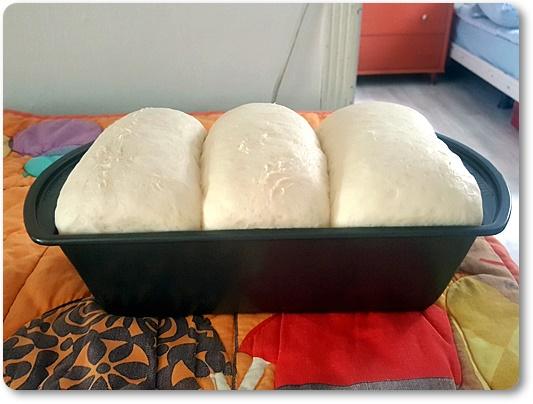 최근 제빵 일기