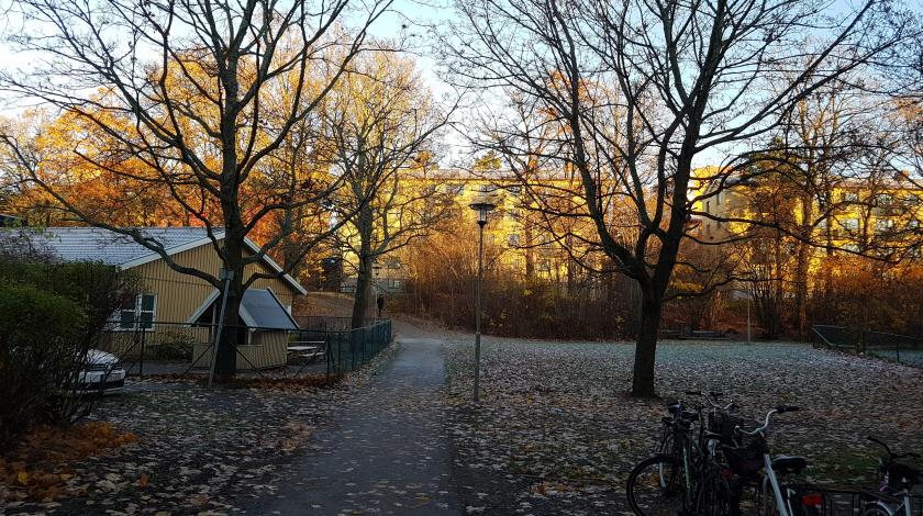 [스톡홀름 여행] 빈터바켄 Vinterviken 호숫가..