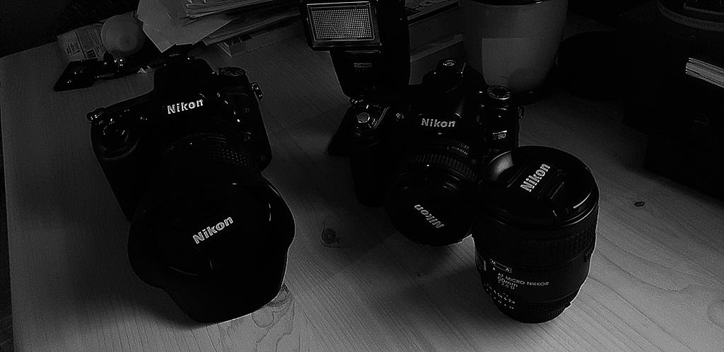다음 카메라는 꼭 올림푸스로..