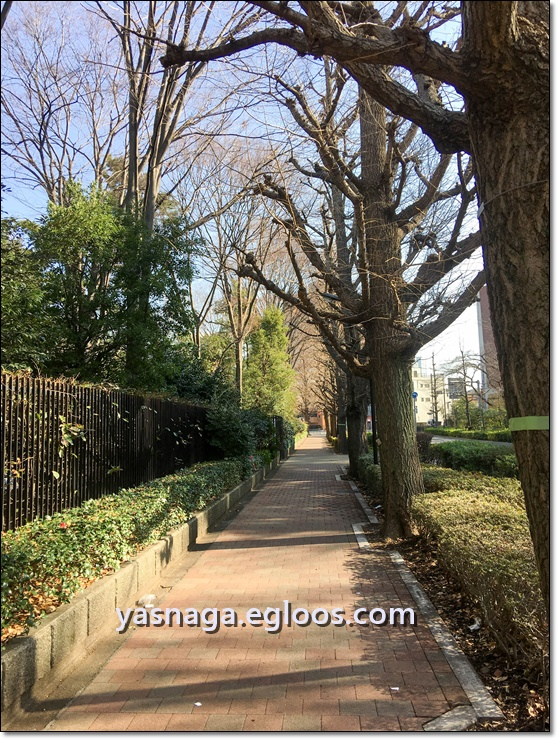 [도쿄여행] 시모사 나카야마역을 다녀옴! + 쇼핑센..