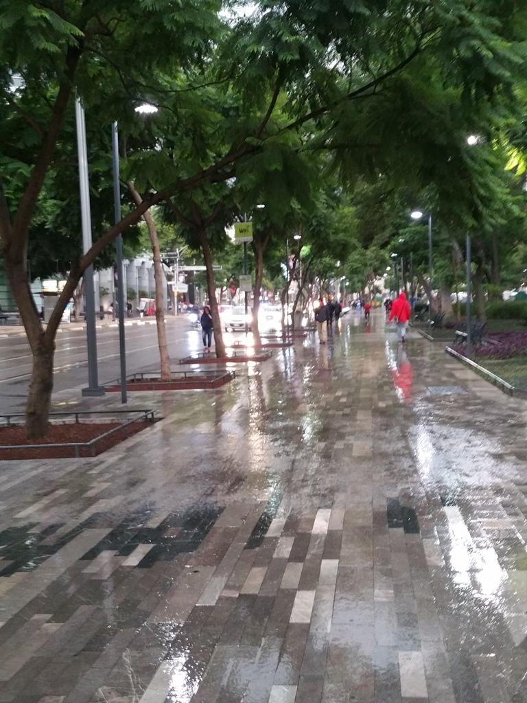 [멕시코] 비 오는 알라메다 공원