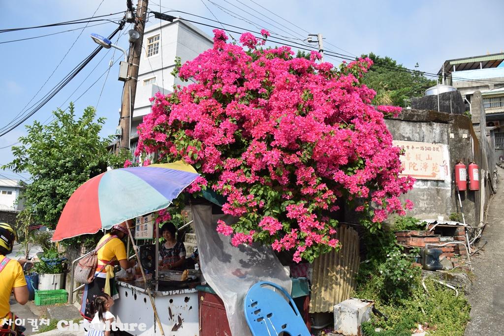 대만지롱基隆의 유료해수욕장 화평도和平島공원과..