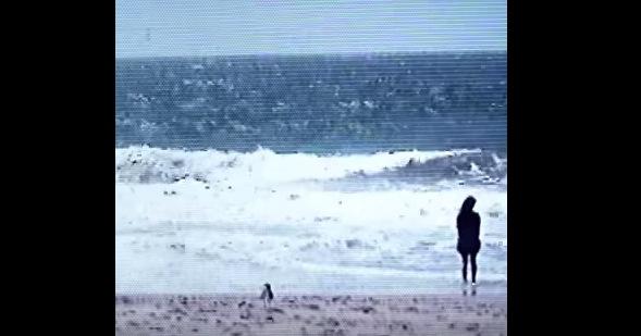 KIRIN (기린)- HUH WAH (2018)