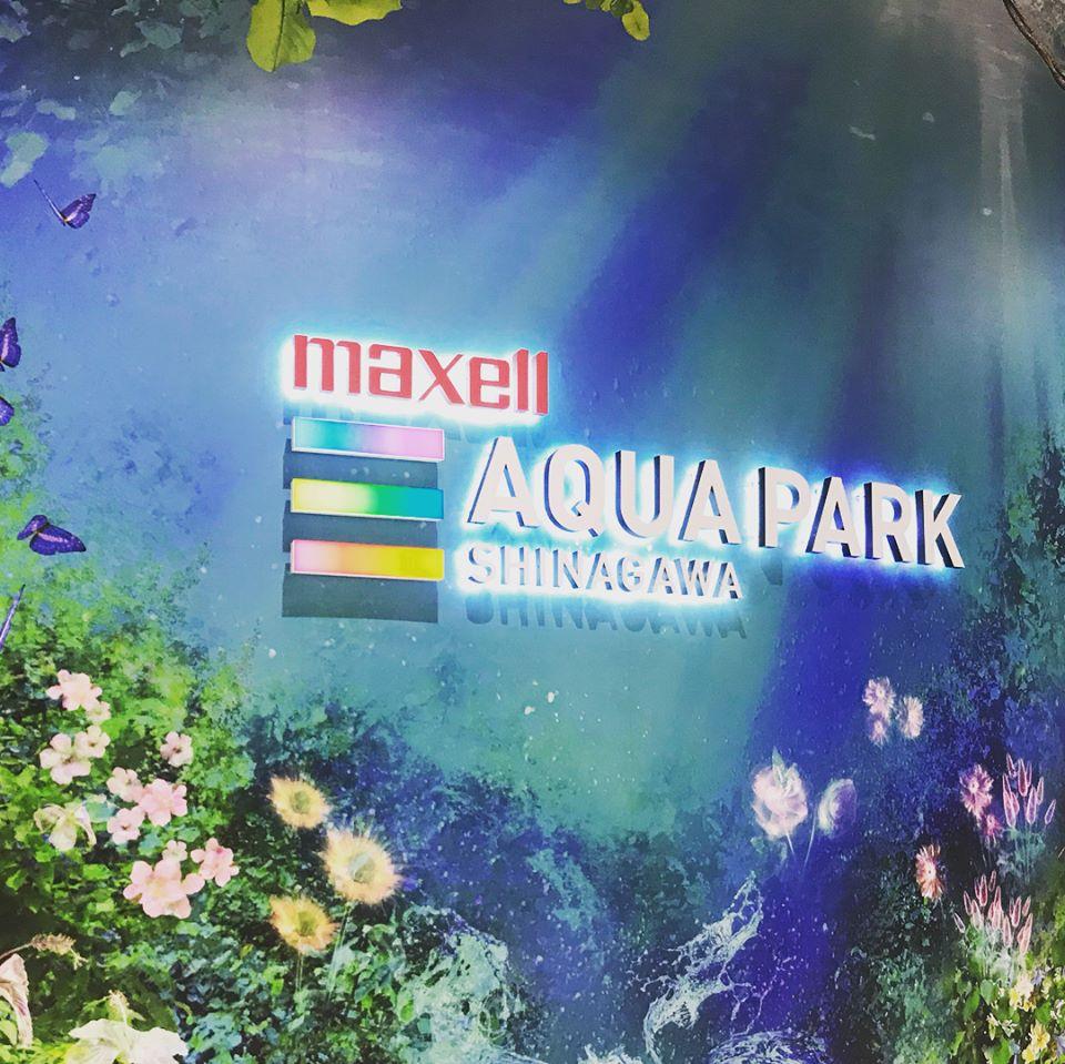 빛과 어우러진 물고기, 막셀 아쿠아파크 시나가와..