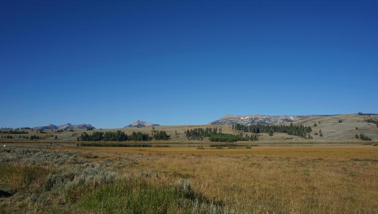 옐로스톤 국립공원 Yellowstone National Park ..
