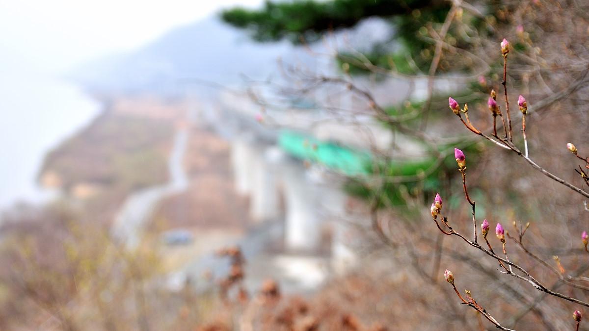 강촌의 봄