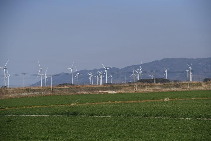 영광 풍력발전 단지 완공, 국내 최대 영농형