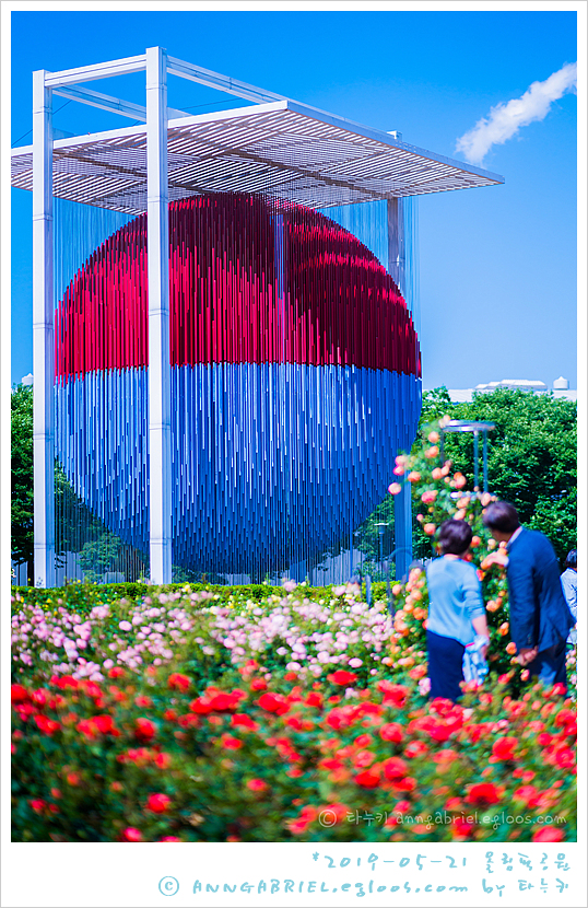 [올림픽공원] 장미 축제 개시